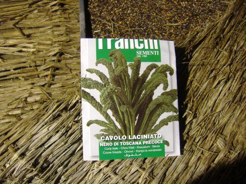 カーボロネロ播種