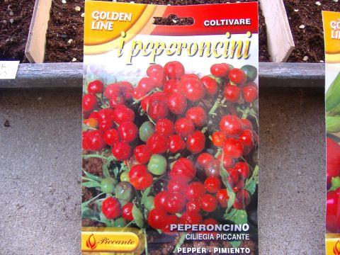 ペペロンチーニ他種まき